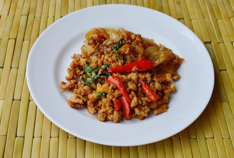 Stekt risnudel och kryddigt finhackat griskött med basilikabladet på maträtt royaltyfri fotografi