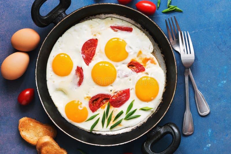 Stekte ägg med tomater tjänade som i en panna med rostat bröd på en blå bakgrund Lekmanna- lägenhet, tonat foto arkivbilder