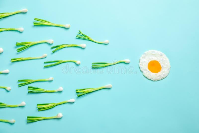 Stekte ägg och salladslökar royaltyfri bild