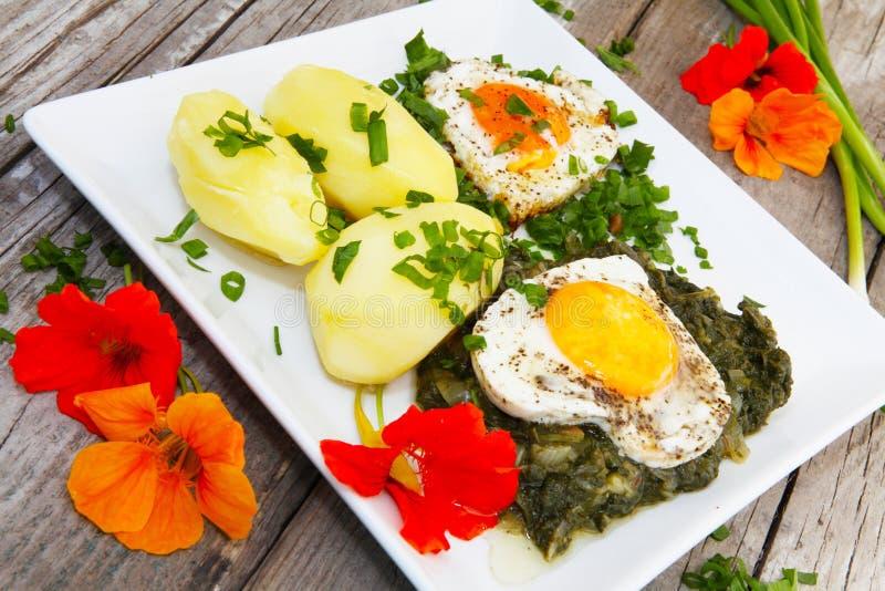 Stekte ägg och spenat arkivbild