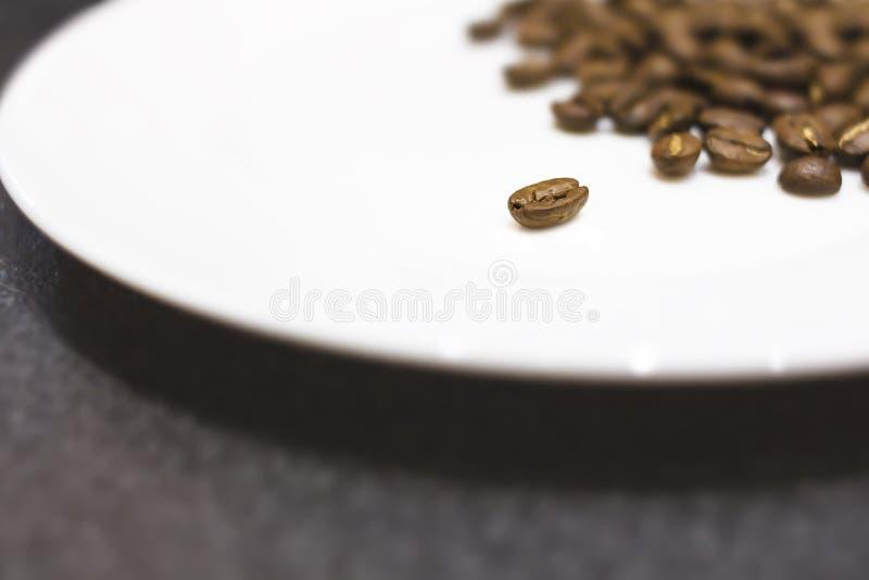 Stekte kaffebönor på en vit platta arkivbilder