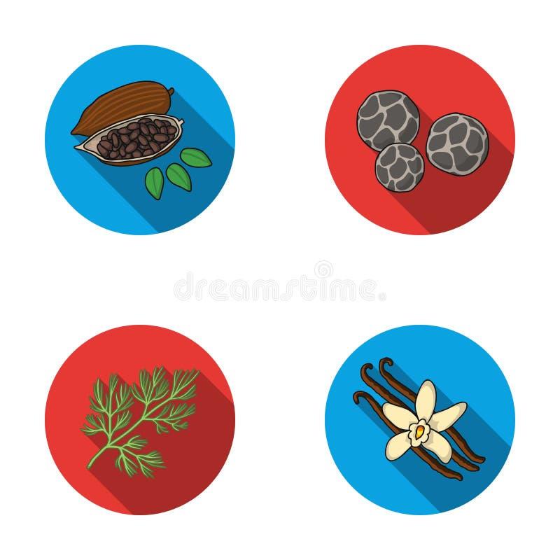 Stekte kakaobönor, dill, svartpeppar, vanilj Örter och kryddor ställde in samlingssymboler i plant materiel för stilvektorsymbol stock illustrationer