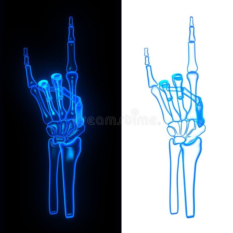 Stel handbeen vector illustratie