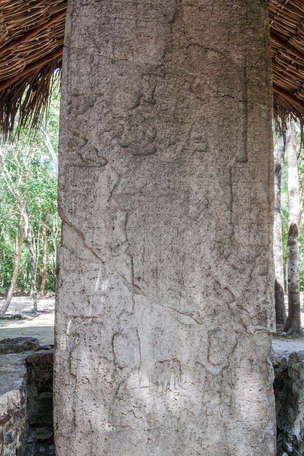 Stela bij de ruïnes van de Mayan stad Coba, Mexi royalty-vrije stock foto's