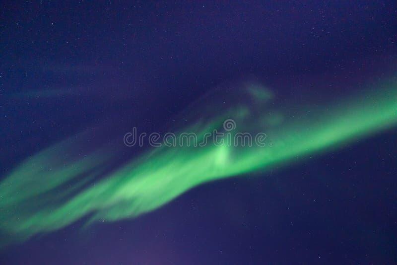 Stella artica polare del cielo di aurora borealis dell'aurora boreale in Norvegia le Svalbard in montagne di viaggio della città  fotografia stock