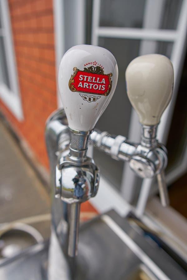 Stella Artois images stock