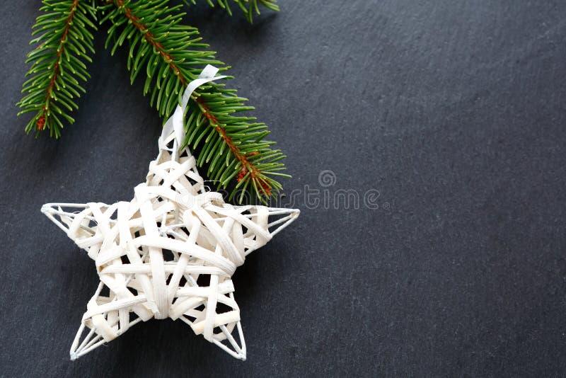 Stella bianca di Natale sul ramo di un pino fotografie stock