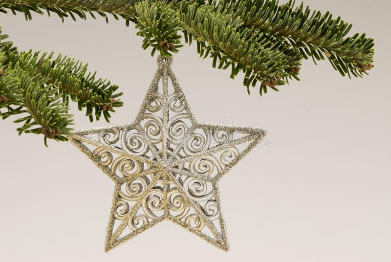 Stella di natale che appende sull'albero di Natale fotografia stock