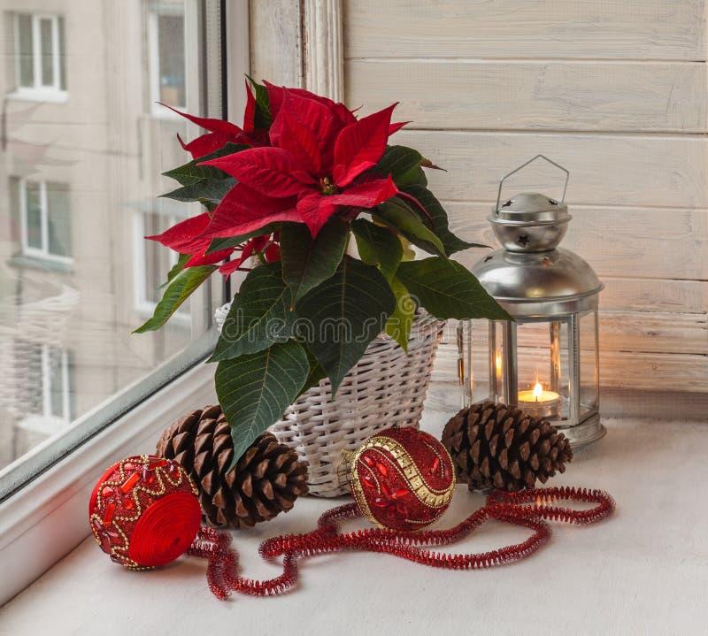 Stella di Natale nella finestra la vigilia di Adven immagini stock
