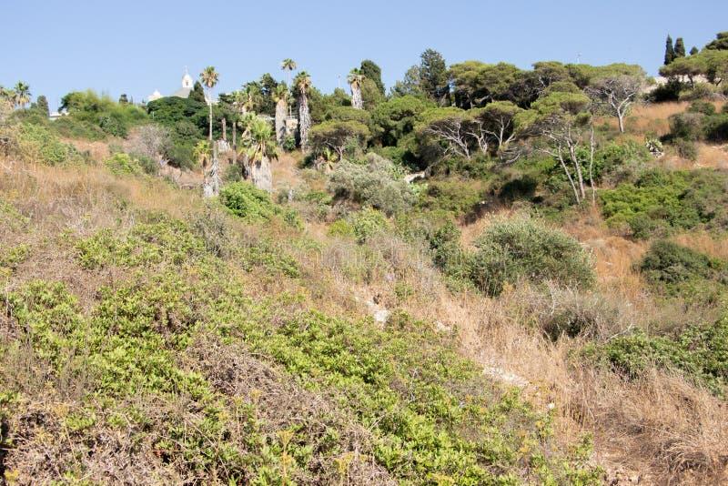 The Stella Maris Monastery located on the slopes of Mount Carmel in Haifa, Israel stock image