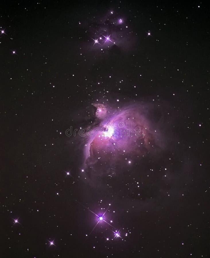 Stelle del cielo notturno, nebulosa M42 della costellazione di Orione fotografia stock