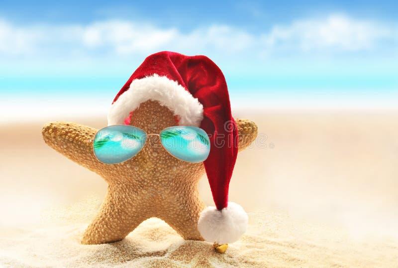 Stelle marine in cappello rosso di Santa alla spiaggia Natale di estate immagini stock libere da diritti