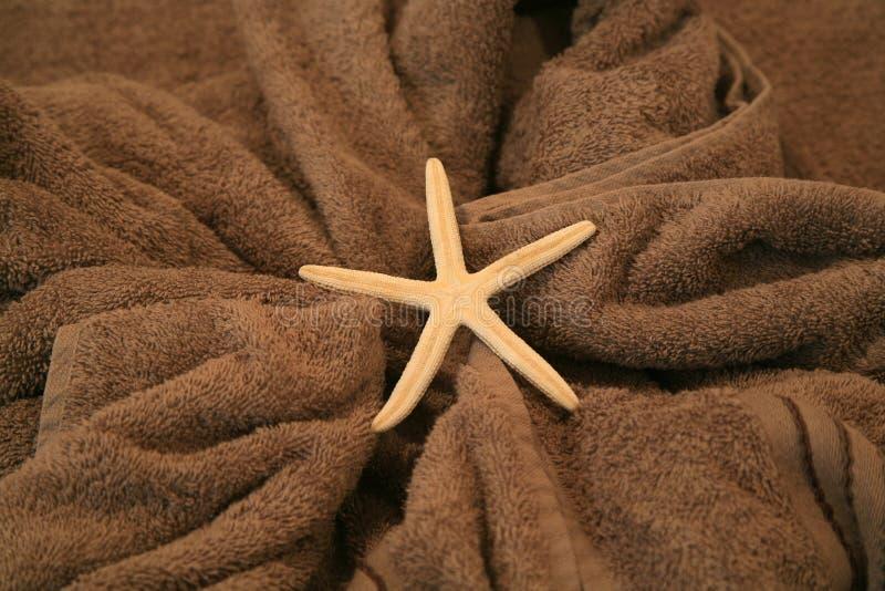 Stelle Marine Che Si Trovano Su Un Asciugamano Immagini Stock