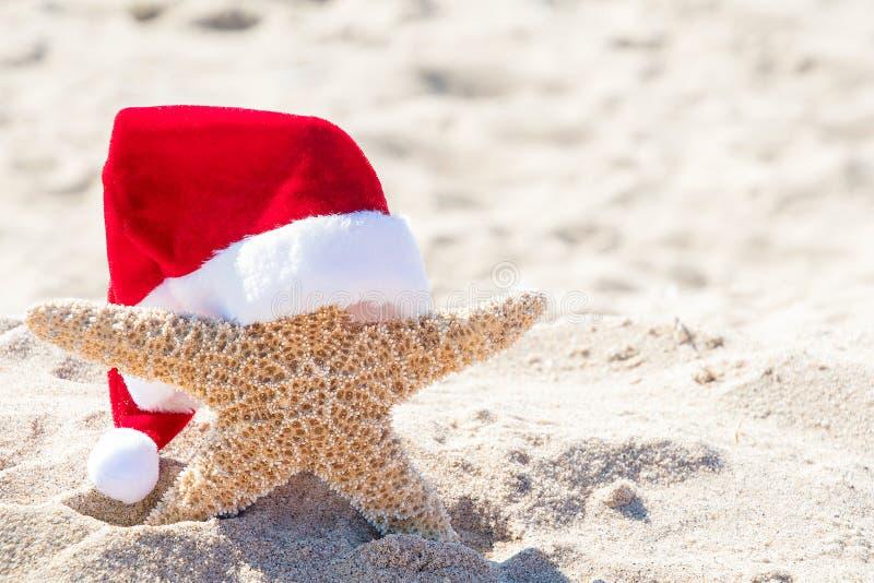 Stelle marine con il cappello di Santa in sabbia fotografie stock libere da diritti
