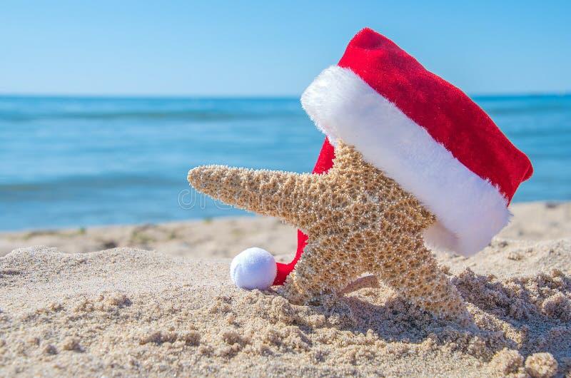 Stelle marine della spiaggia con il cappello di Natale immagini stock