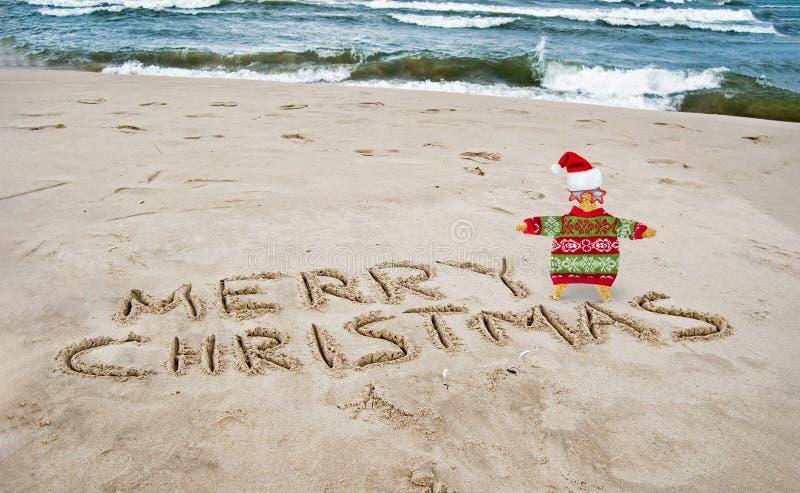 Stelle marine di Natale con il saluto sulla spiaggia fotografie stock