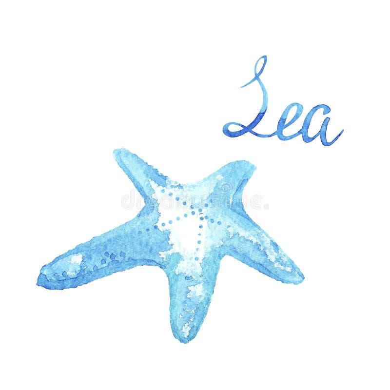 Stelle marine tropicali dell'acquerello e mare blu di iscrizione isolato su fondo bianco illustrazione vettoriale