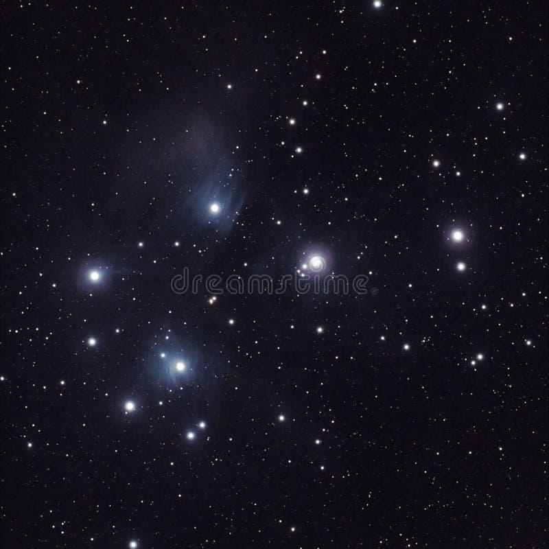 Stelle nel Pleiades (M45) fotografia stock