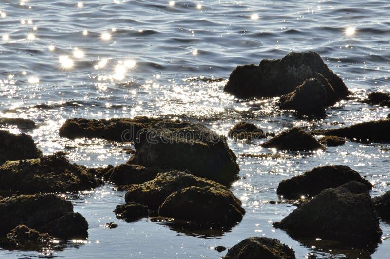 Stelle nell'acqua fotografie stock libere da diritti