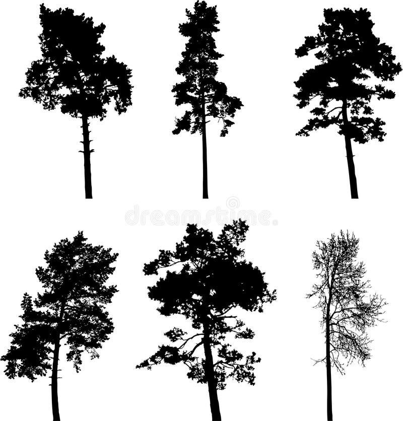 Stellen Sie Bäume - 4. Schattenbilder ein stock abbildung