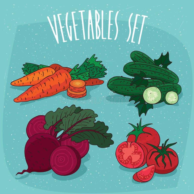 Stellen Sie Gemüse mit Abschnitten und Scheiben ein lizenzfreie abbildung