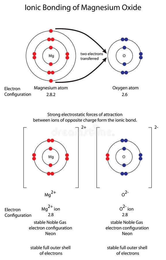 Stellen Sie grafisch dar, um Ionenabbinden in Magnesiumoxid MgO zu zeigen vektor abbildung