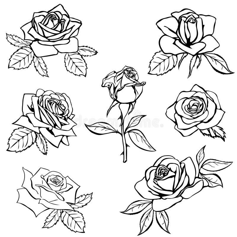 Stellen Sie Rosen-Skizze ein stock abbildung