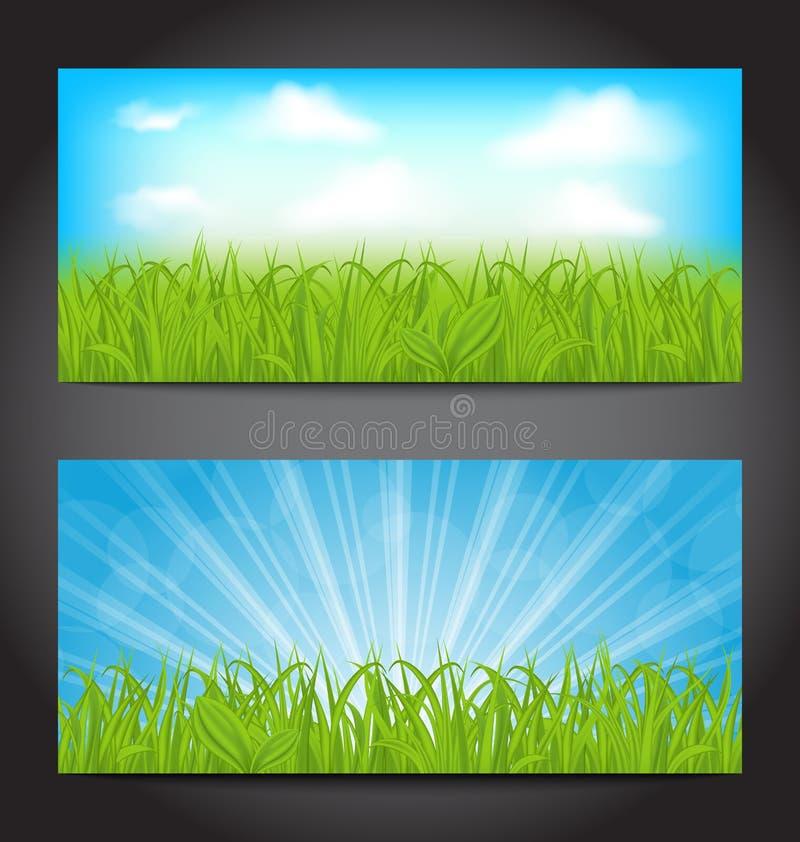 Stellen Sie Sommerkarten mit Gras, natürliche Hintergründe ein stock abbildung