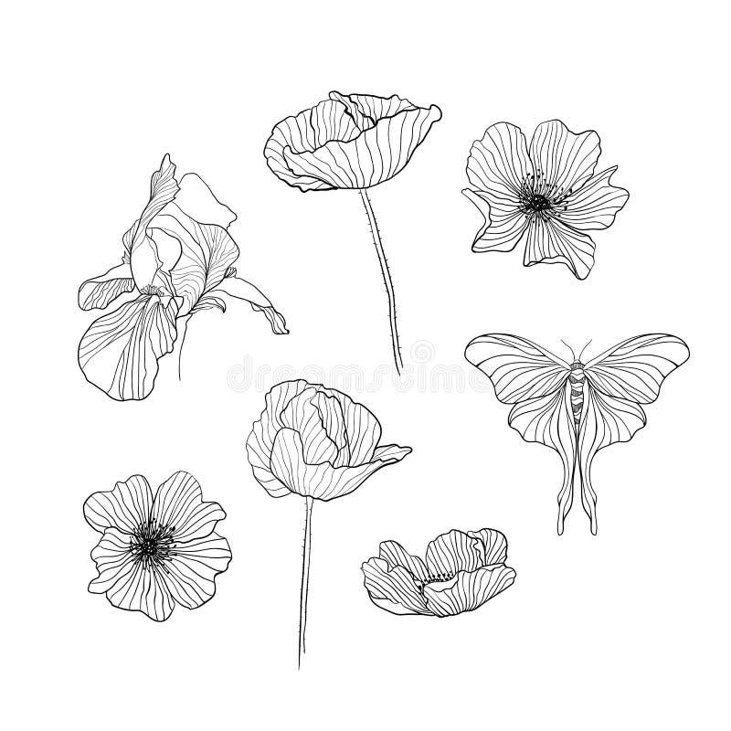 Stellen Sie vom gezogenen Blumenentwurf ein vektor abbildung