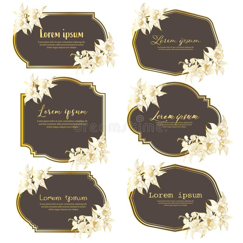 Stellen Sie vom Handgezogenen Blumenrahmen ein Geometrischer Rahmen mit Handgezogener Blume Botanische Zusammensetzung Dekorative vektor abbildung
