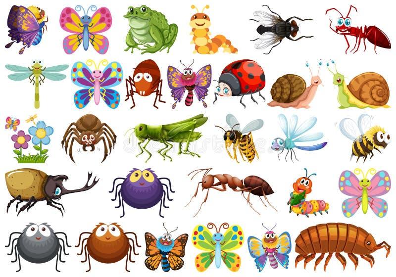 Stellen Sie vom Insektencharakter ein vektor abbildung