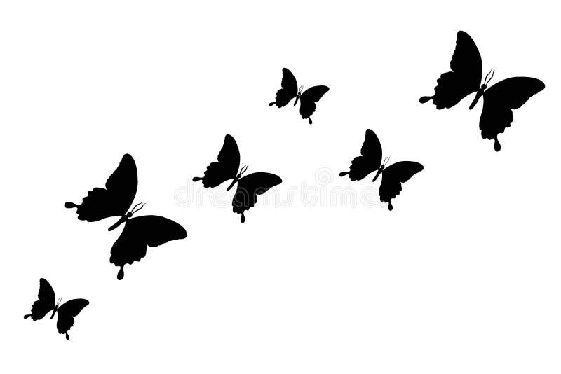 Stellen Sie vom schwarzen Schmetterlingsschattenbild ein, das auf einem weißen Hintergrund lokalisiert wird vektor abbildung