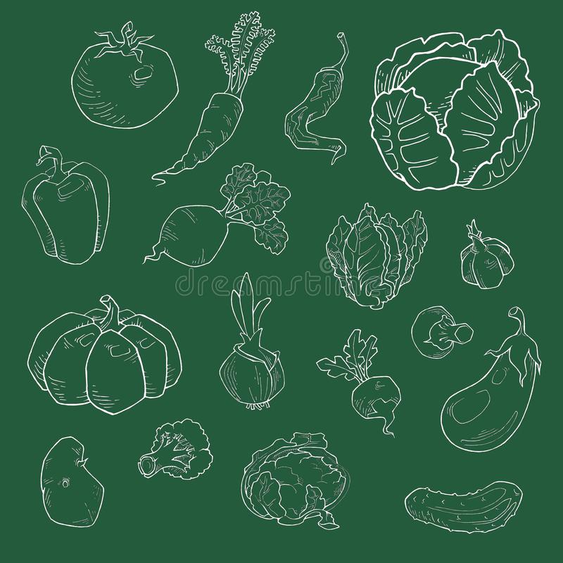 Stellen Sie vom verschiedene Handgezogenen Gemüse ein Skizzen von verschiedenen Nahrungsmitteln stock abbildung