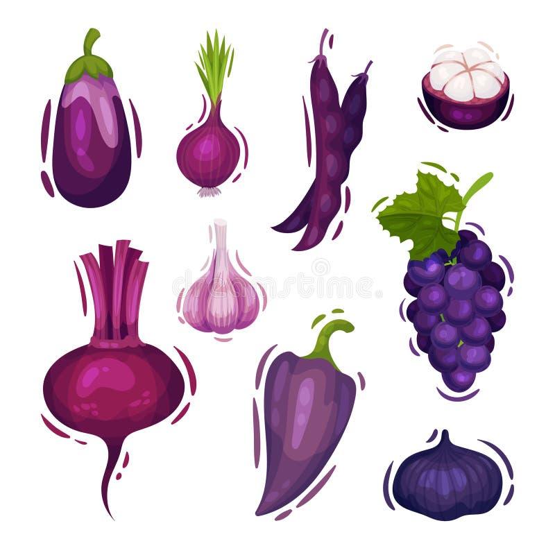 Stellen Sie vom verschiedenen Gemüse und von den Früchten der purpurroten Farbe ein Vektorabbildung auf wei?em Hintergrund lizenzfreie abbildung
