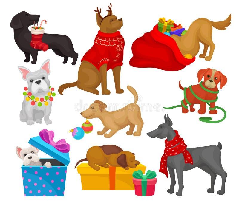 Stellen Sie von den Hunden mit Weihnachtsgegenständen ein Haupthaustiere Flache Vektorelemente für Grußkarten oder -plakate stock abbildung