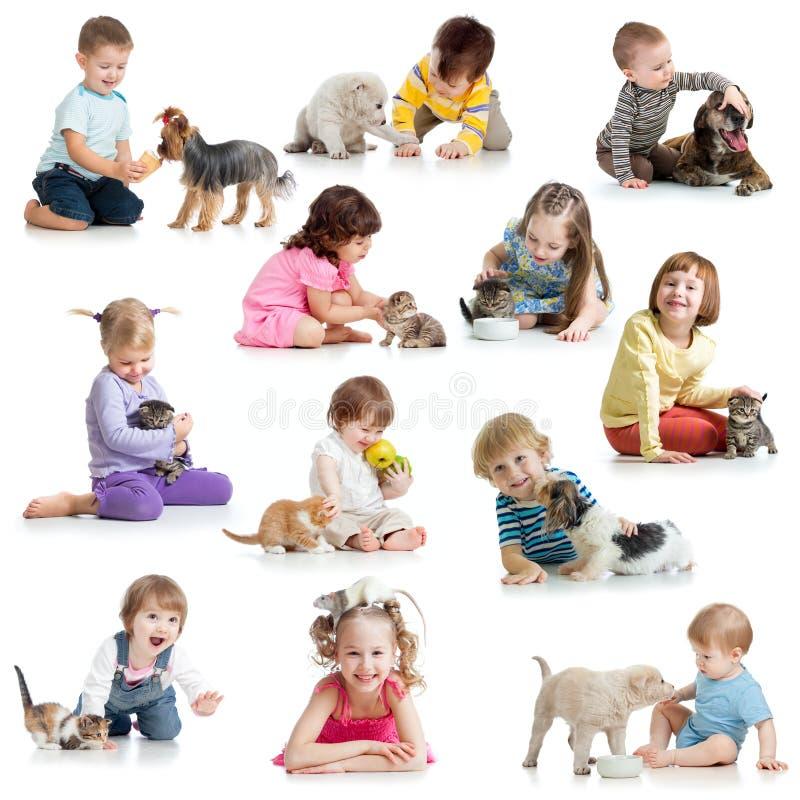 Stellen Sie von den Kindern mit Haustierhunden, Katzen, Ratte ein lizenzfreies stockfoto