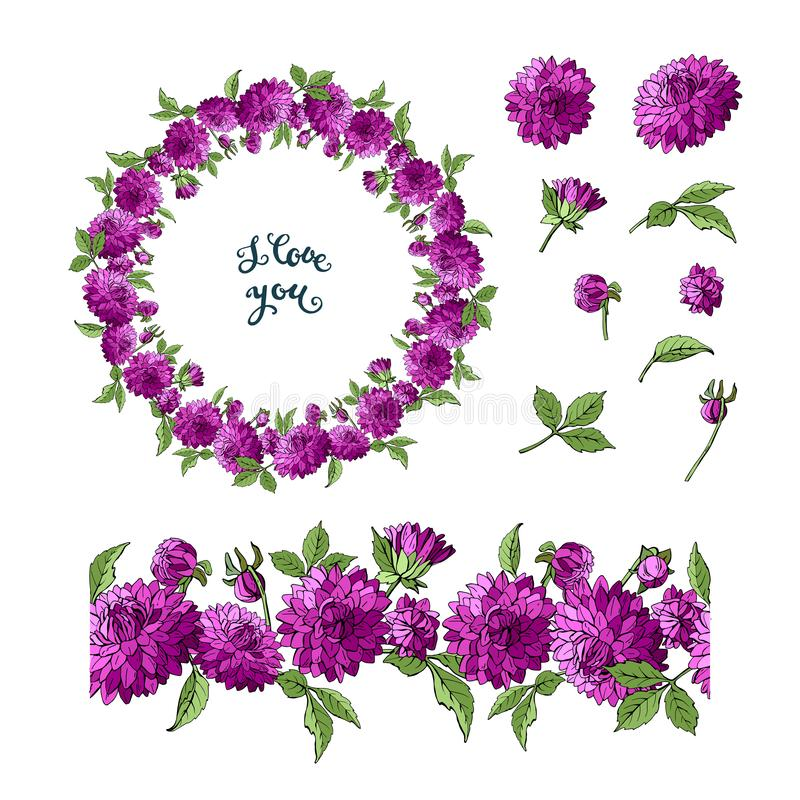Stellen Sie von den purpurroten Dahlienflorenelementen ein, die auf weißem Hintergrund, Kranz und nahtloser Bürste von Blumen, Ve lizenzfreie abbildung