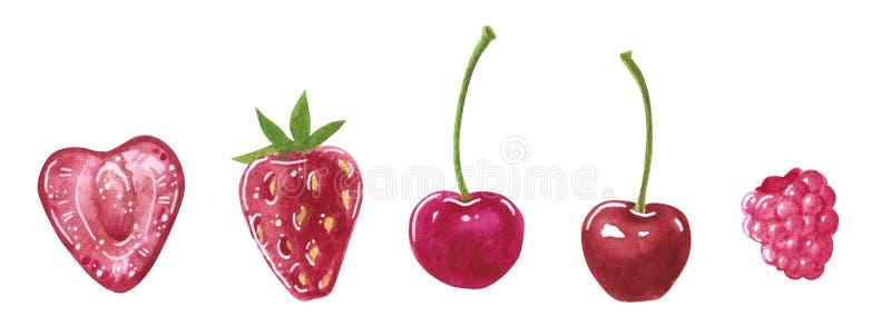 Stellen Sie von den roten Beeren des Gartens ein, Herz-förmig und rund, Aquarellclipart vektor abbildung
