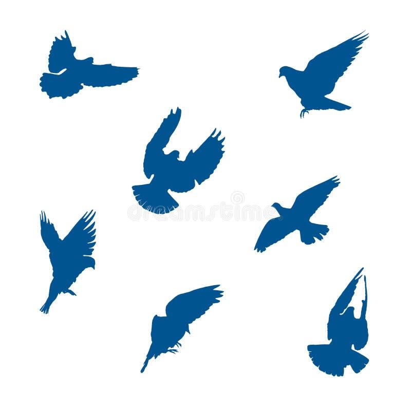 Stellen Sie von den Vektorillustrationen von Tauben ein vektor abbildung