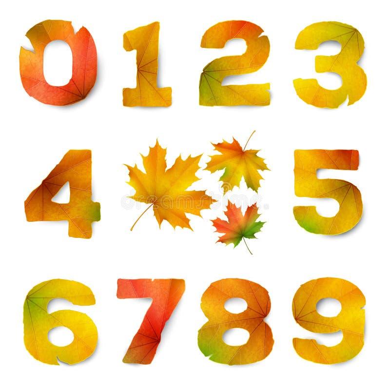 Stellen Sie von den Vektorzahlen ein, die vom Herbstlaub gemacht werden vektor abbildung