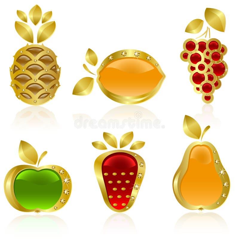 Stellen Sie von der Goldfrucht ein stock abbildung
