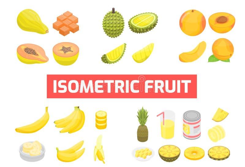 Stellen Sie von der isometrischen Früchte Vektor-Illustration ein lizenzfreie abbildung