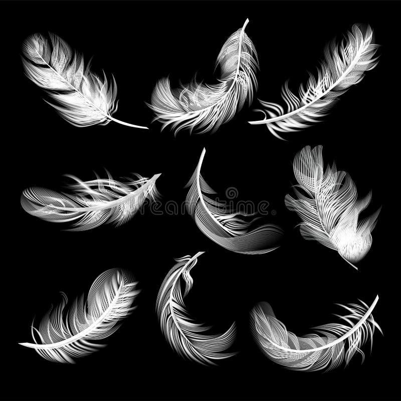Stellen Sie von lokalisierten fallenden weißen flaumigen gewirbelten Federn in der realistischen Art auf schwarzem Hintergrund ei stock abbildung