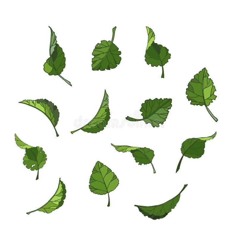 Stellen Sie von lokalisierter grüner Blattvektor-Ikonenillustration auf weißem Hintergrund ein vektor abbildung