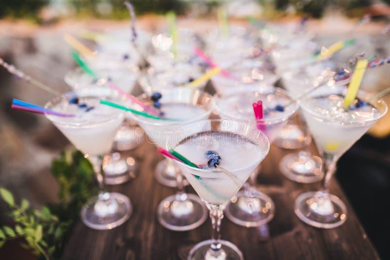 Stellen Sie von Martini-Cocktails mit Blaubeere auf die Oberseite ein lizenzfreie stockfotografie