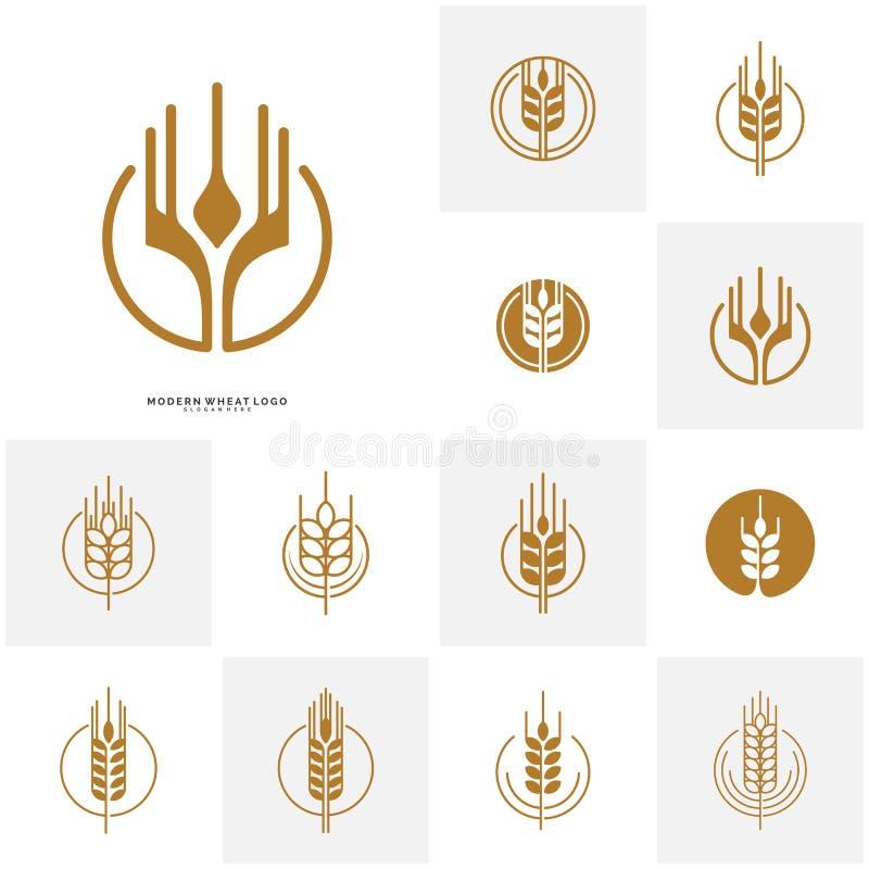 Stellen Sie Weizenvon den luxuskorn- und -brotaufklebern ein Naturweizen Landwirtschaftsweizen Logo Template Vector vektor abbildung