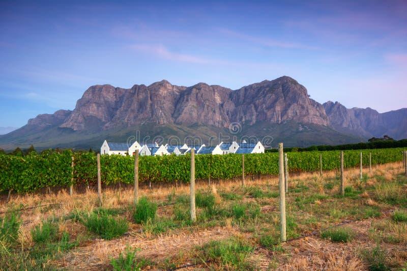 Stellenbosch, het hart van het wijnbouwgebied in Zuiden Afri stock foto