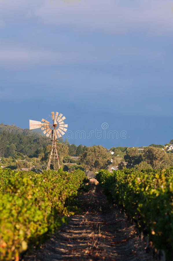 The Stellenbosch wine lands region near Cape Town. stock photography