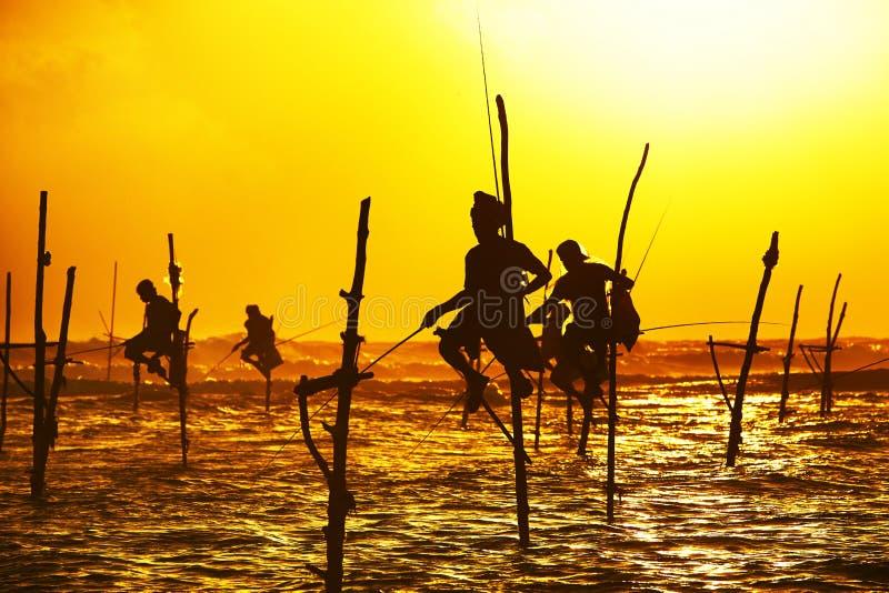 Stelt visserij stock afbeelding
