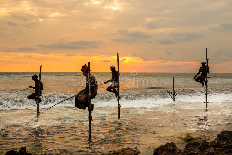 Stelzenfischer in Koggala, Sri Lanka stockfotografie